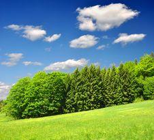 Free Spring Landscape Stock Photos - 14889983