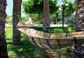 Free Hammock Under Palm Trees. Stock Photos - 14893363
