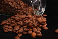 Free Grains Of Coffee Royalty Free Stock Photography - 14890067
