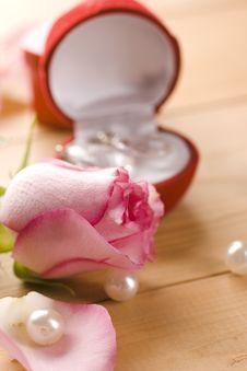 Free Rose Royalty Free Stock Image - 14892036