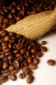 Free Coffee Beans Stock Photo - 14892840