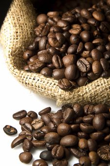 Free Coffee Beans Stock Photos - 14892973