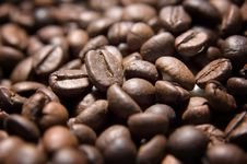 Free Coffee Beans Stock Images - 14893094