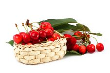 Free Ripe Berries Of A Sweet Cherry In A Basket With A Royalty Free Stock Photos - 14893328