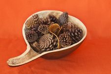 Free Gourd With Pinecones Stock Photography - 14894502