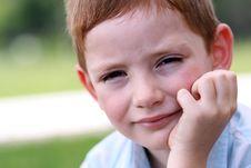 Free Portrait Of Beautiful Little Boy Stock Photography - 14895632