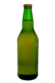 Free Beer Stock Images - 14895714