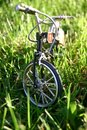 Free Bicycle In A Grass Stock Photos - 1493513