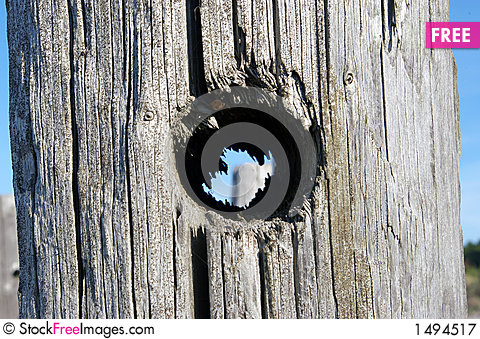 Free Hole In Wooden Pole Royalty Free Stock Photography - 1494517