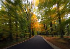 Free Fall Road Stock Images - 1490834