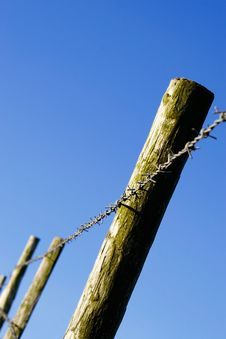 Free Barbed Wire Fence Royalty Free Stock Photo - 1491455