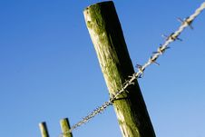 Free Barbed Wire Royalty Free Stock Image - 1491456