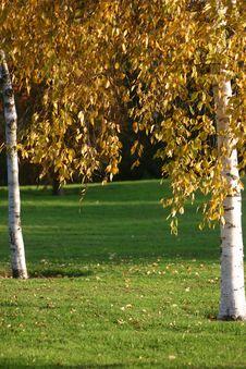 Free Autumn In Beckton Park London Stock Photography - 1493362