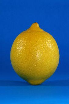 Free Lemon Stock Images - 1493474