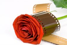 Free  Love Film  Wrapped Stock Photography - 1494172