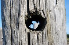 Hole In Wooden Pole Royalty Free Stock Photography