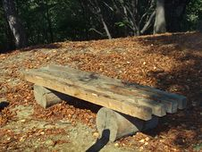 Free Wood Bench Royalty Free Stock Photo - 1494675
