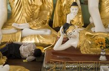 Free Buddha Dreams Royalty Free Stock Photography - 1494807