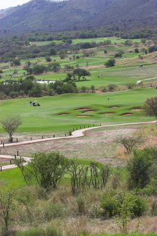 Free Golfing Royalty Free Stock Image - 1495506
