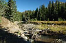 Free Beautiful Little Stream Stock Photos - 1497333