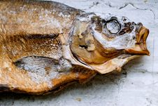 Free Still Life With Fish Royalty Free Stock Image - 1497846
