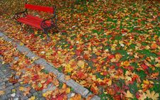 Free Red Bench In Autumn Royalty Free Stock Image - 1499586