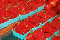 Free Baskets Of Strawberries Royalty Free Stock Photos - 14901328