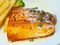 Free Salmon Steak 1 Royalty Free Stock Photos - 14901938