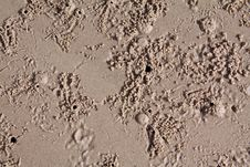 Free Sandy Ground Royalty Free Stock Photo - 14900415