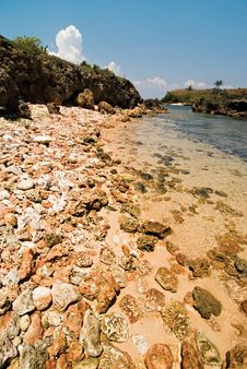 Rocky Beach Shoreline Stock Photography