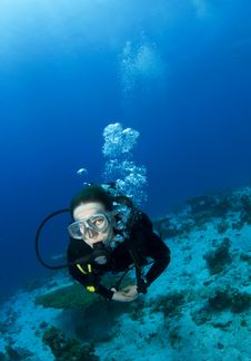 Free Scuba Diver Royalty Free Stock Image - 14904266