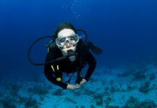 Free Scuba Diver Royalty Free Stock Photos - 14904278