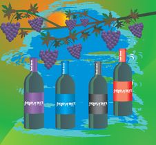 Free Wine Botles Royalty Free Stock Photos - 14905838