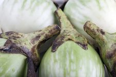Thai Eggplant Royalty Free Stock Images