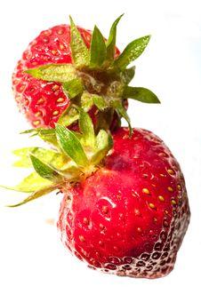 Free Strawberry Stock Photo - 14909170