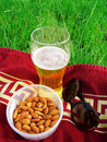 Free The Beer, Spectacles, Nuts On The Grass Royalty Free Stock Images - 14910359