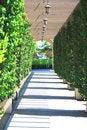 Free Garden Corridor Stock Image - 14914521