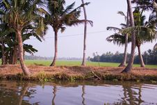 Alapuzha Backwaters Of Kerala, India Stock Images