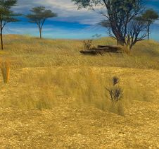 Free KRW Serengeti Royalty Free Stock Images - 14912419