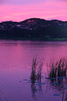 Free Pink Sunset At Lakeside Royalty Free Stock Image - 14914056
