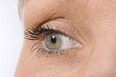 Beautiful Female Eye Stock Image
