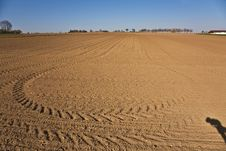 Free Freshly Ploughed Acre With Row Of Trees Stock Images - 14914834