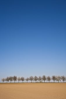Free Freshly Ploughed Acre With Row Of Trees Stock Photos - 14914953