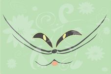 Free Mug Of The Cat On Green Background With Pattern Stock Photo - 14915980
