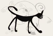 Black Cat On White Background Stock Photography