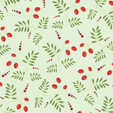 Free Floral Seamless Pattern Royalty Free Stock Photography - 14916557