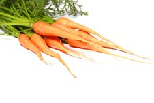 Free Fresh Carrots Royalty Free Stock Photos - 14917918