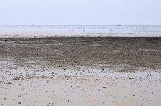 Free Coastline In Misty Day Stock Photo - 14918360