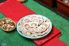 Free Shellfish.Fish Market In South Korea Royalty Free Stock Photos - 14918418