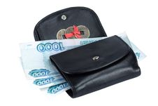 Free Purse With Paper Money Banknote Royalty Free Stock Photos - 14918528